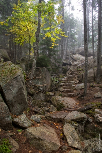 Perpendicular Trail 11