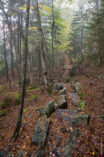 Perpendicular Trail 15