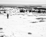 Sargent Mountain, Acadia National Park