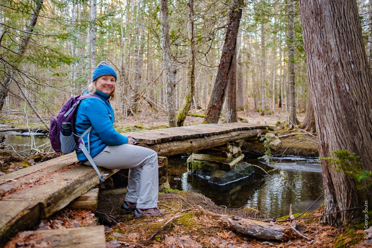 Acadian Ridge Trail (6)