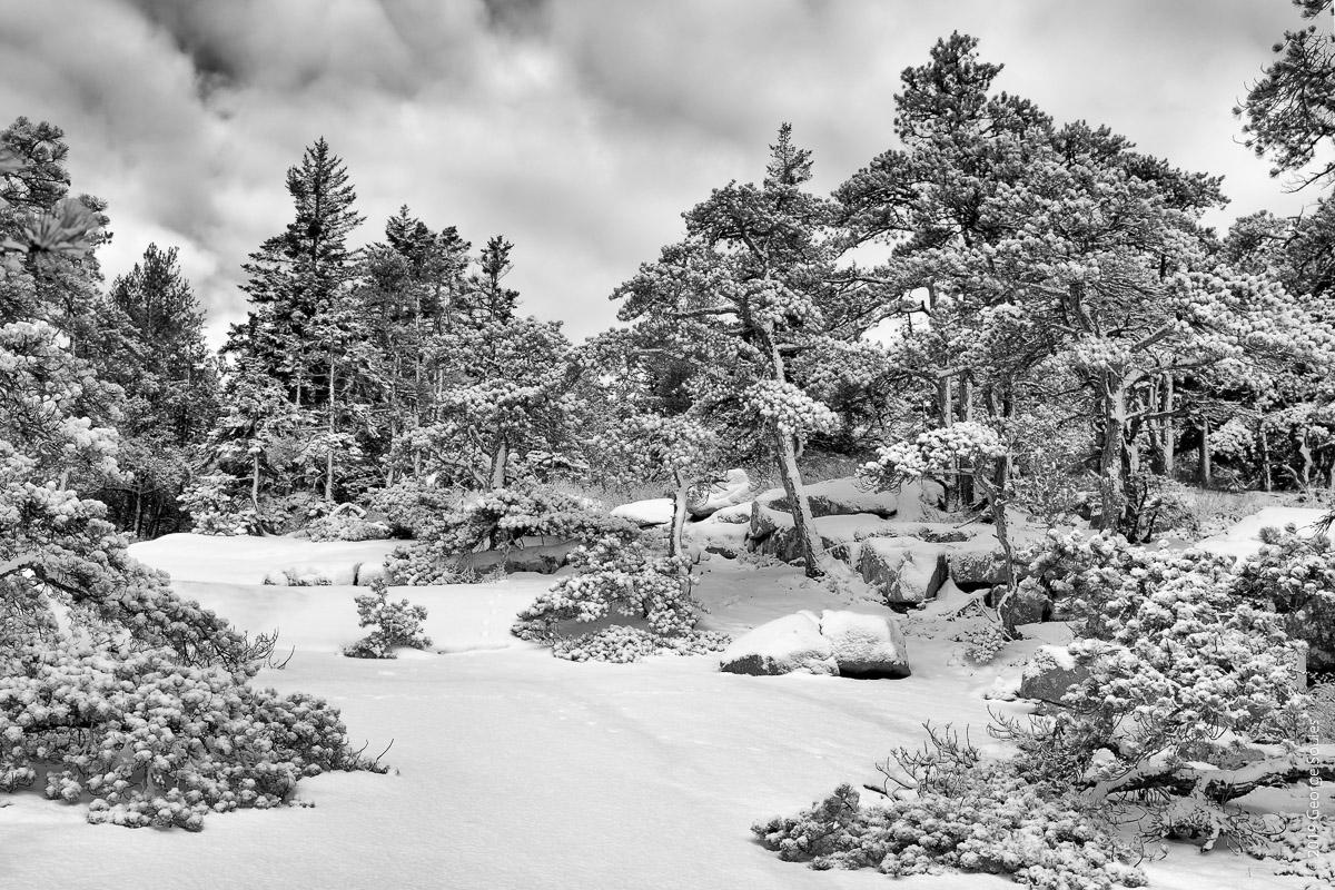 Winter on Saint Sauver