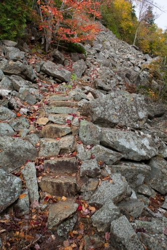 Perpendicular Trail 1