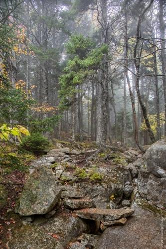 Perpendicular Trail 10