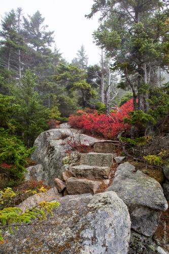 Perpendicular Trail 14