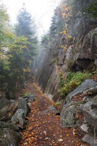 Perpendicular Trail 16