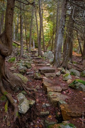 Perpendicular Trail 17