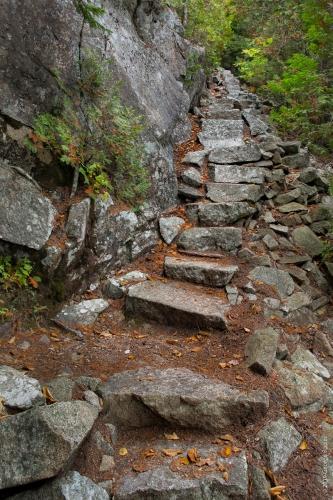 Perpendicular Trail 4