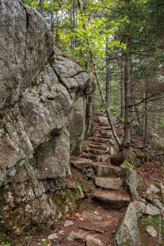 Perpendicular Trail 7