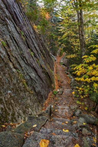 Perpendicular Trail 8