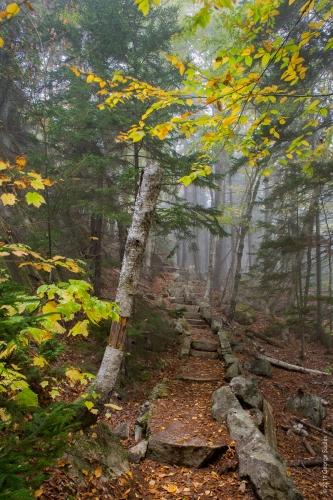 Perpendicular Trail 9